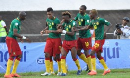 Coupe du monde 2014 : zoom sur le Cameroun