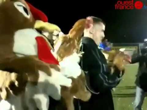 Sablé-sur-Sarthe court après les poulets du PSG