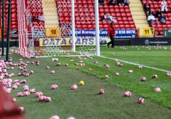 Les supporters de Charlton et Coventry ont envoyé... des cochons sur la pelouse